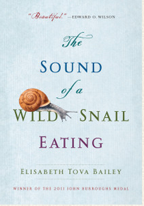 The Sound of a Wild Snail Eating.png