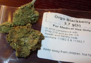 dried blackberry marijuana labelled for medical use