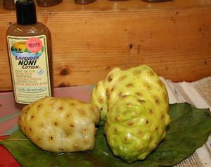 Photo of a bottle and noni juice with two noni fruits.