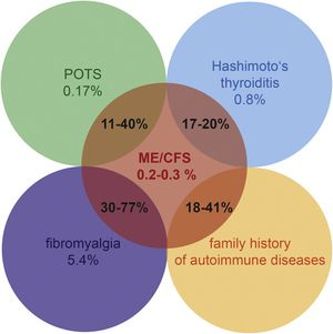 Shows fibromyalgia 30-77% overlap, Hashimoto's thyroiditis 17-20%, POTS 11-40% overlap and family history of autoimmune conditions 18-41% overlap.